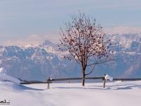 Inverno a Casera Mezzomiglio, Cansiglio