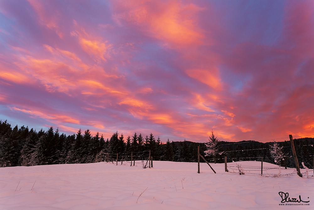 Cansiglio, colori invernali, #1