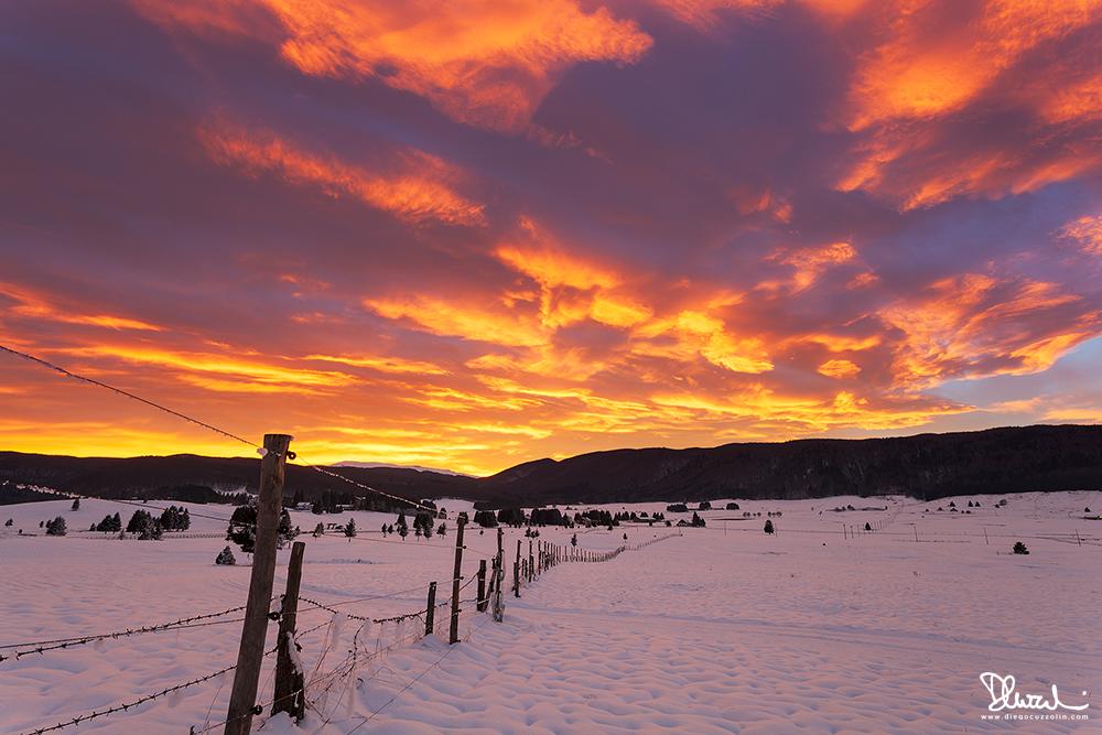 Cansiglio, colori invernali, #2