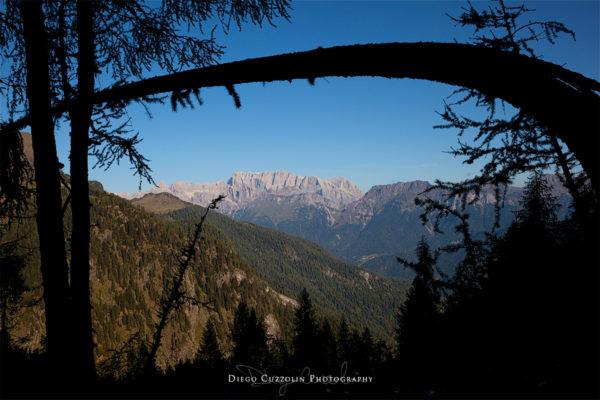 La parete sud della Marmolada, dal sentiero che sale al bivacco Bedin (Pale di San Lucano)