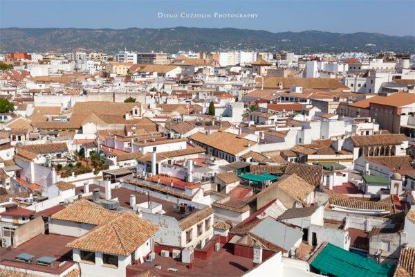 I tetti delle case di Cordoba, visti dalla Torre del Alminar (il campanile)